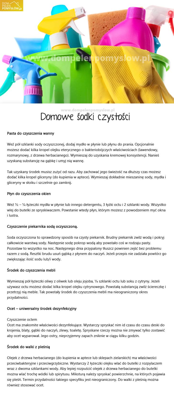 DomPelenPomyslow.pl Domowe środki czystości