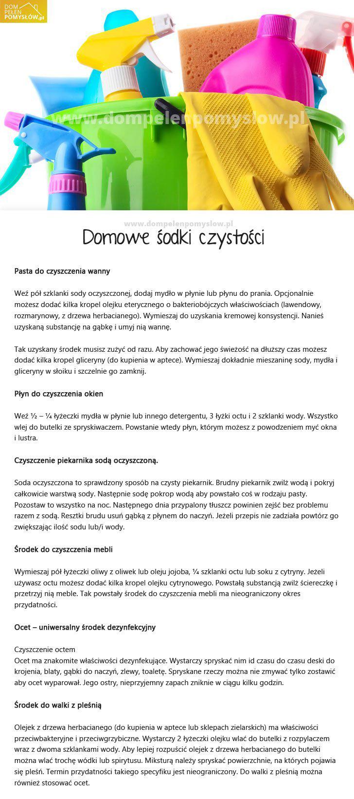 DomPelenPomyslow.pl Środki czystości domowej roboty - tania i bezpieczniejsza alternatywa