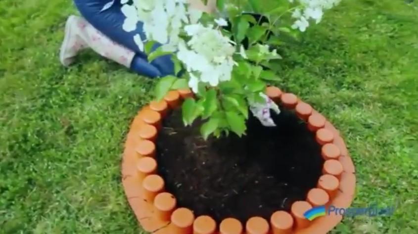 Jak zrobić palisadę wokół kwiatów w ogrodzie?