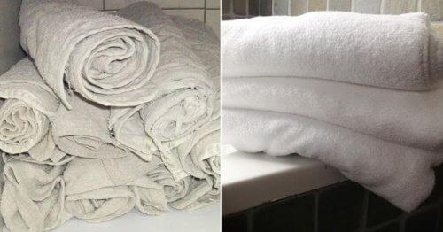 Stare ręczniki – spraw by były nowe