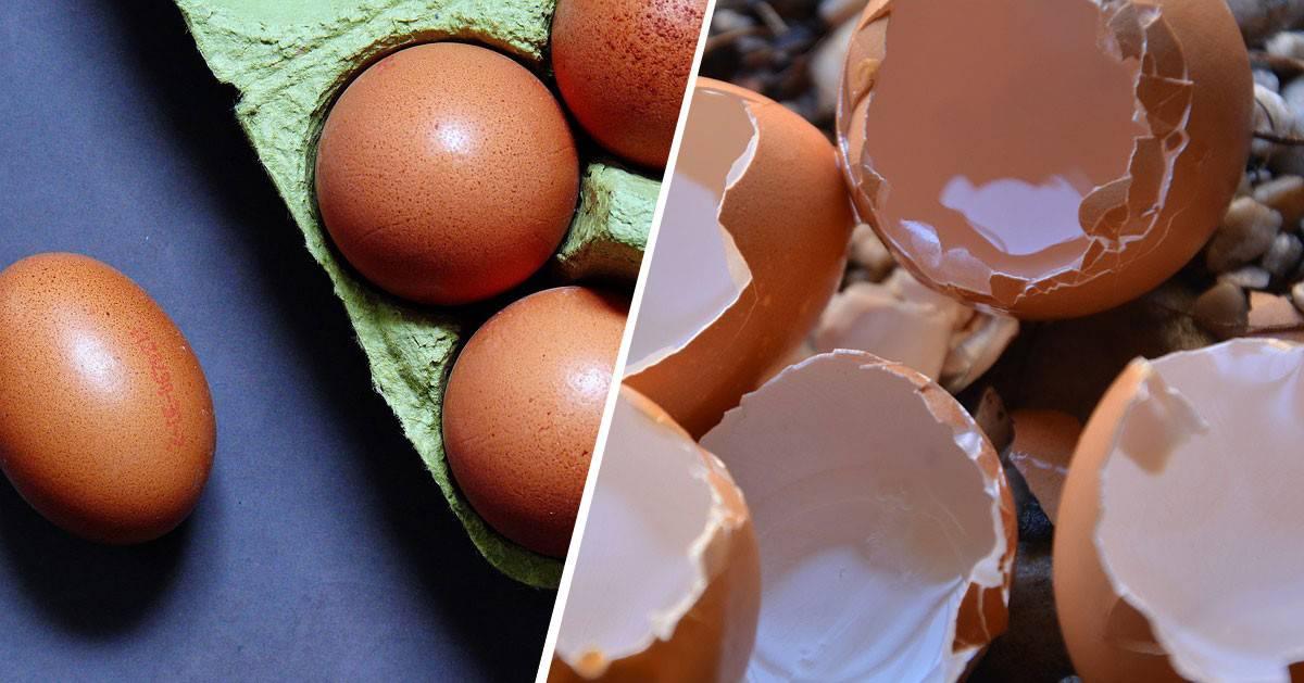 Domowy sposób na łatwe obieranie jajek