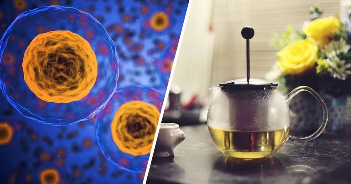 2 dniowy detoks organizmu – zobacz jak oczyścić się z toksyn w dwa dni