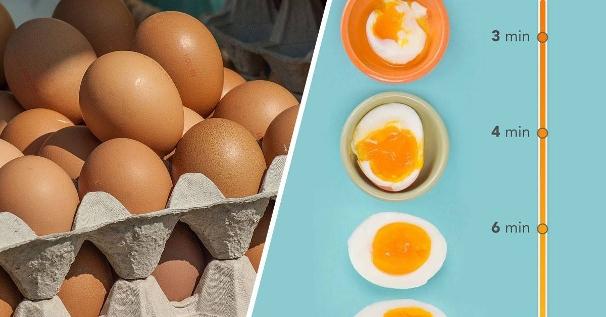 Ile czasu gotować jajka na twardo i miękko