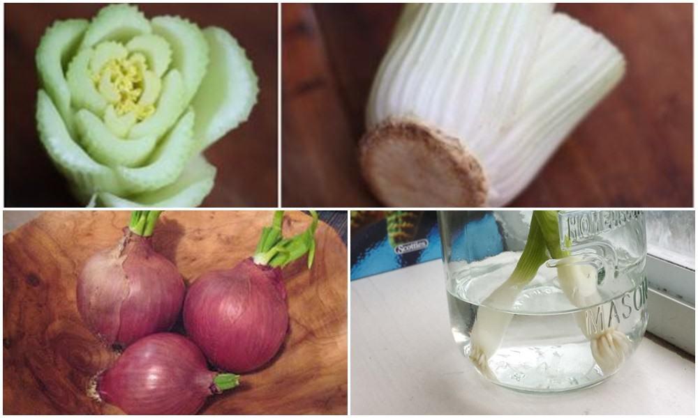 Jeśli je zjesz nie wyrzucaj tego co pozostanie. Z resztek możesz wyhodować nowe owoce i warzywa!