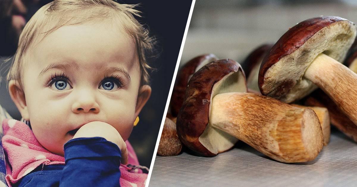 Czy możemy dać dziecku grzyby?