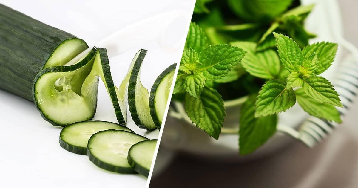 DomPelenPomyslow.pl 3 produkty, które pomogą Ci pozbyć się tłuszczu z brzucha