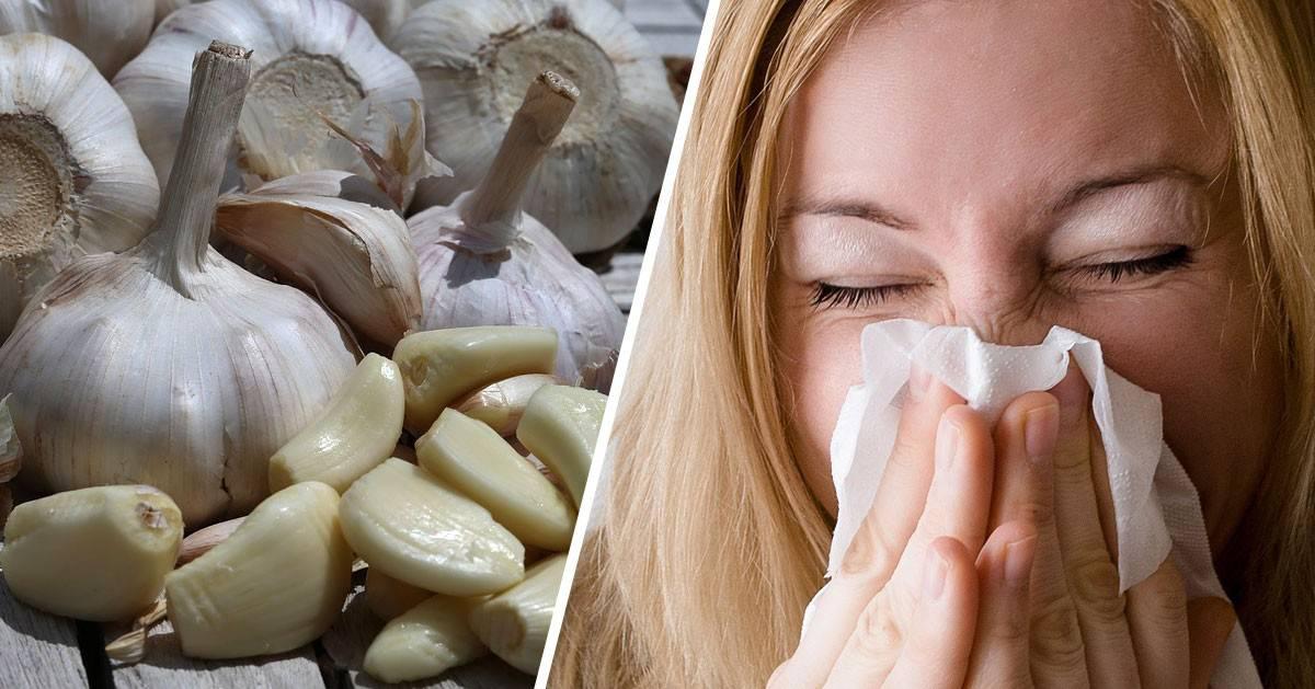 Syrop z czosnku na choroby. 10 razy skuteczniejszy od antybiotyku i naturalny!