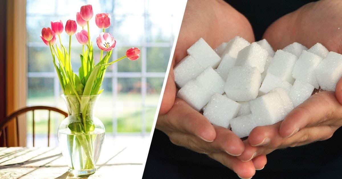 Nietypowe zastosowania cukru, które musisz poznać!