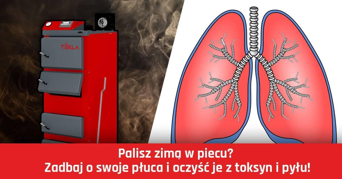 Palisz zimą w piecu? Zadbaj o swoje płuca i oczyść je z toksyn i pyłu!