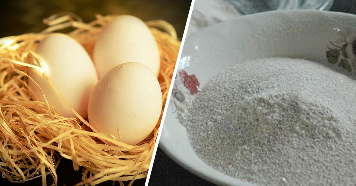 Czy jadłaś kiedykolwiek skorupki od jajek? Zobacz jak to zrobić i dlaczego warto!