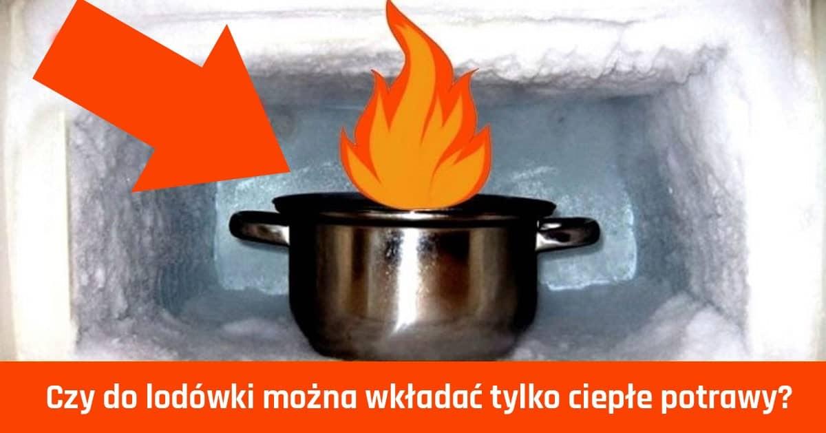 Czy do lodówki można wkładać ciepłe potrawy?