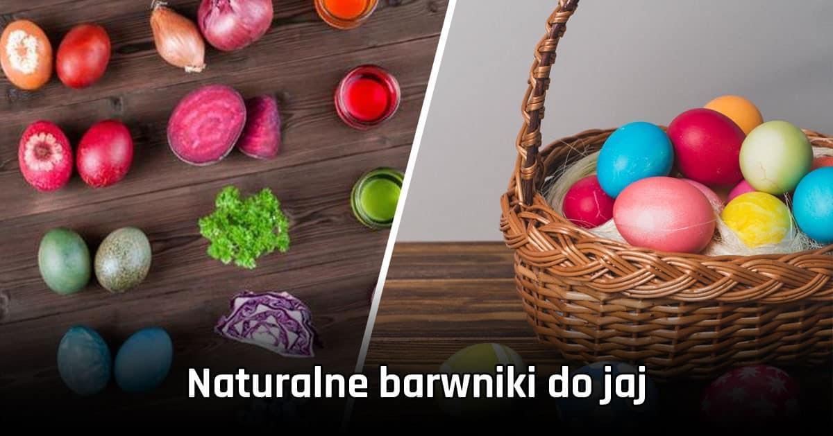 Naturalne sposoby na barwienie jaj – PISANKI 100% NATURY!