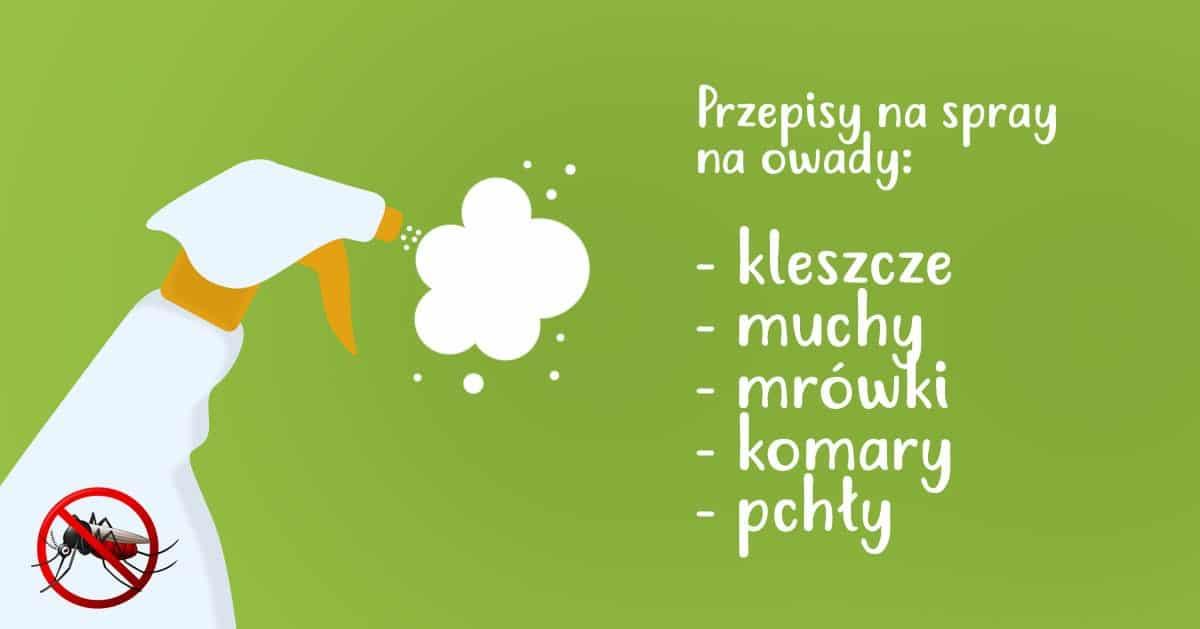 5 przepisów na domowe spraye na różne owady!