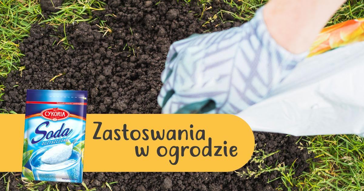 Jak wykorzystać sodę oczyszczoną w ogrodzie