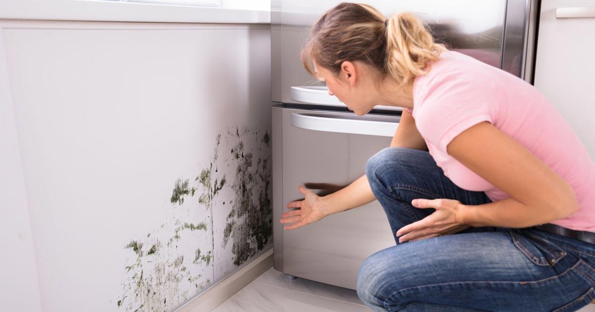 Jak zblokować wilgoć i zlikwidować wykwity na ścianach i suficie?