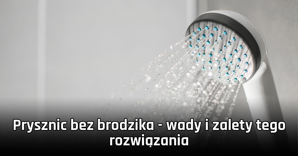 Prysznic bez brodzika – wady i zalety tego rozwiązania