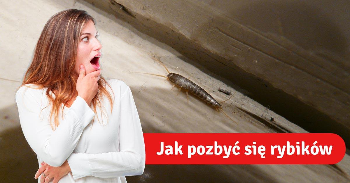 Nowy sposób na pozbycie się rybików z łazienki. Wypróbuj go!