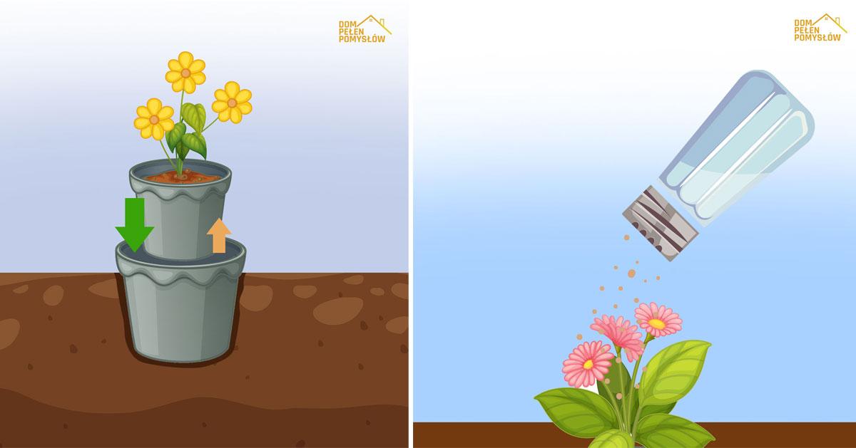 Kilka przydatnych trików, które wykorzystasz w swoim ogrodzie
