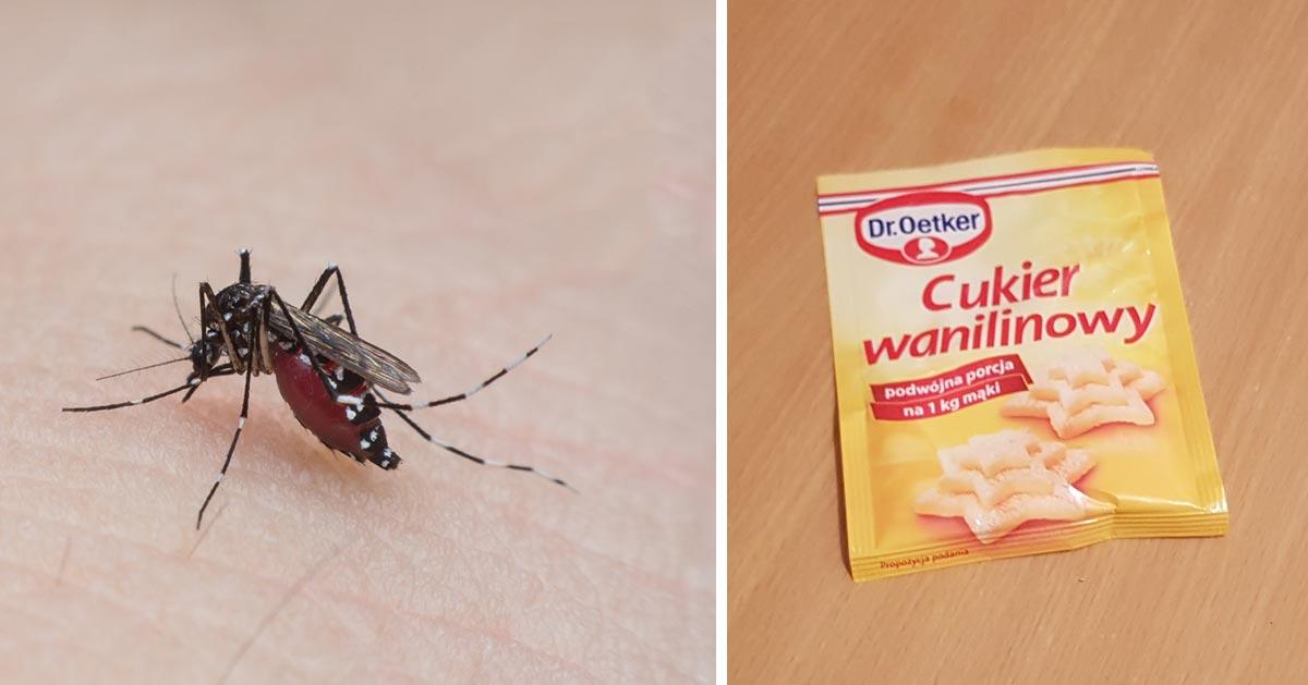 Kosztuje 25 gr i świetnie odstrasza komary! Na pewno masz go w swojej kuchni :)