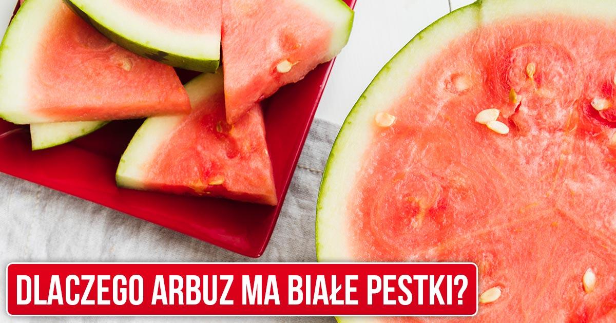 Dlaczego arbuz ma białe pestki?