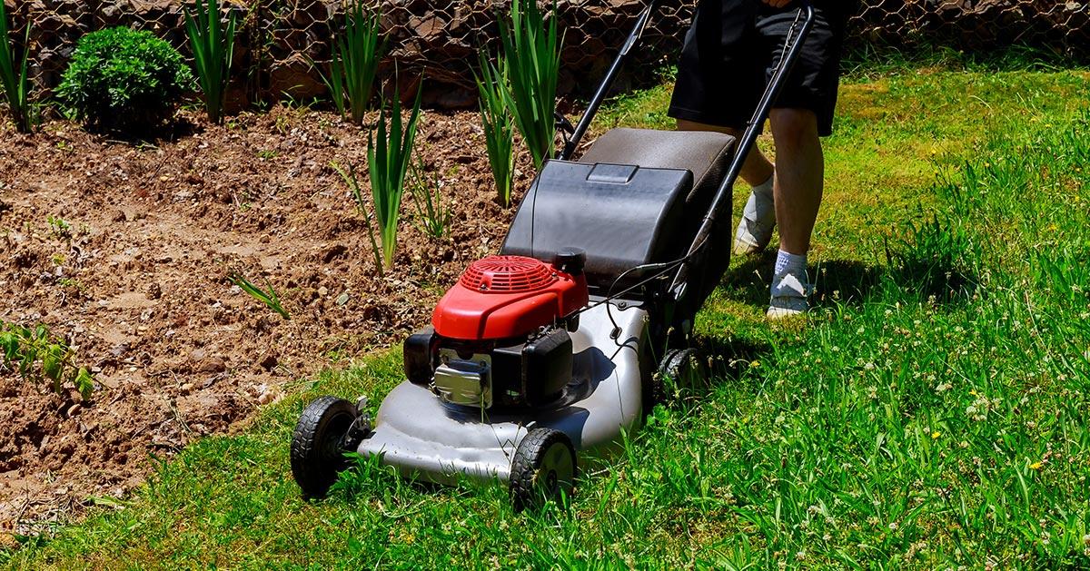 Nigdy tego nie rób podczas koszenia trawnika!