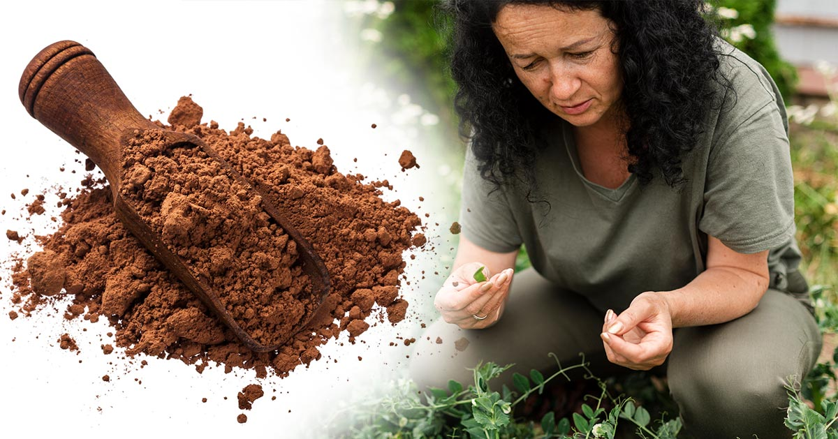 Rozsypała cynamon w swoim ogrodzie. Zobacz dlaczego, a zrobisz to samo!