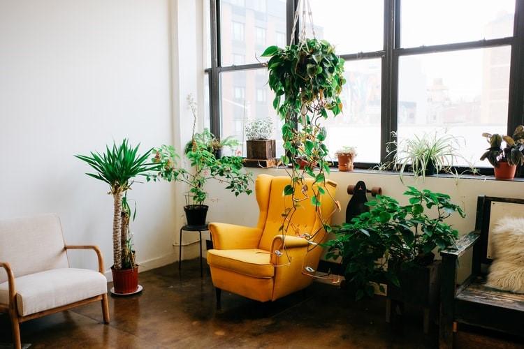 Jak wybrać idealny fotel do naszego salonu?