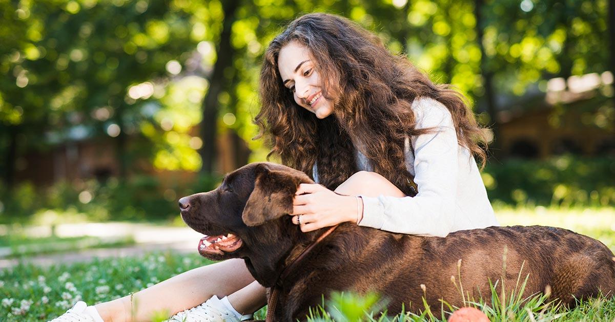 Jak nie należy głaskać psa?