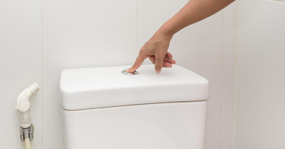 Wracasz z urlopu do domu? Zacznij od spuszczenia wody w toalecie!