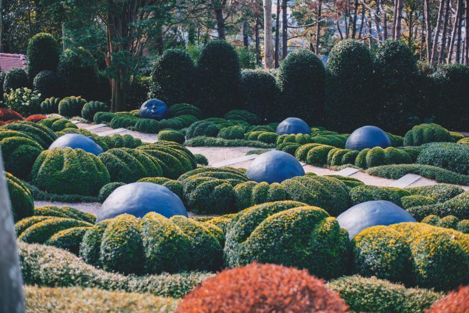 Przycięte krzewy ozdobne w ogrodzie