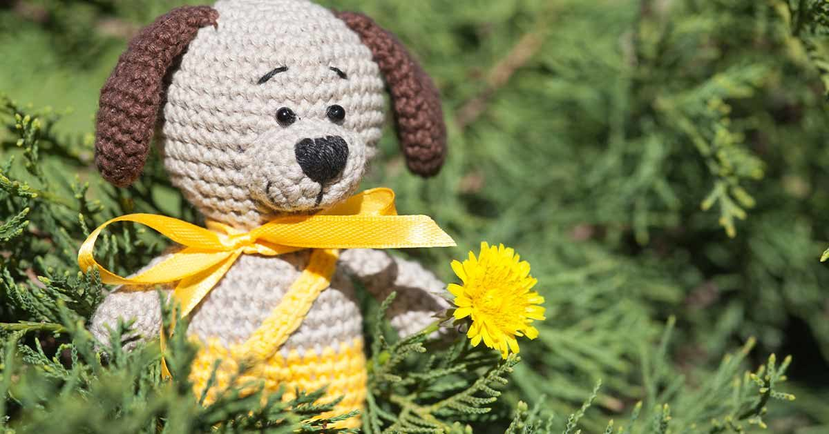 Co oznacza żółta wstążka przy smyczy psa