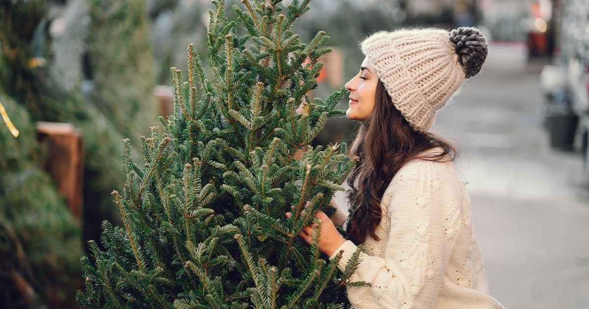 Co zrobić aby choinka na Święta stała dłużej?