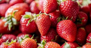 Czy truskawki tuczą? Ile można zjeść truskawek?